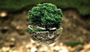 Investir dans l'écologie